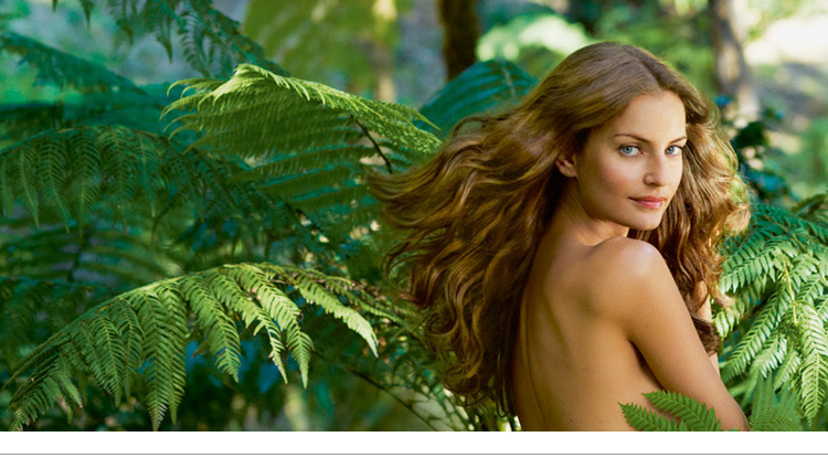 Tintes naturales para el cabello: Phyto