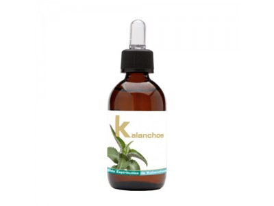 Lumen Extracto Kalanchoe 50ml