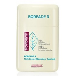 Noviderm Boreade R Stick Reparador 11ml