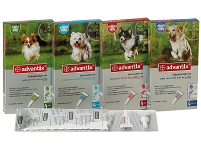 Advantix 4 Pipetas de 1ml Perros de 4-10kg